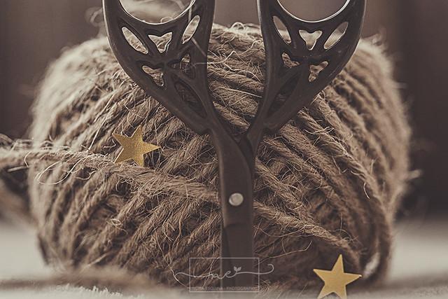 String {Explore}
