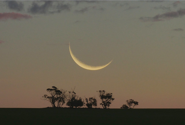 8.4% Crescent tonight over the dusk horizon
