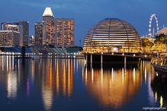 Apple Store Marina Bay (Singapore)