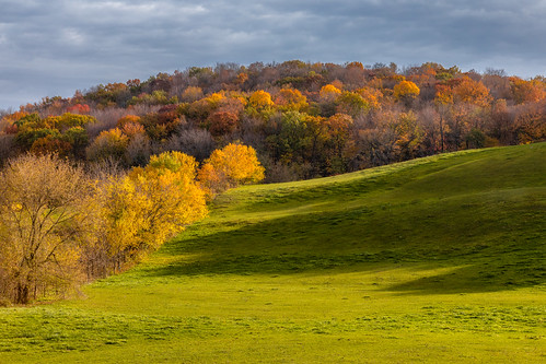 autumn fall landscape nature trees field rural shadows nopeople horizontal wisconsin midwest canoneos5dmarkiv canonef2470mmf28lusm