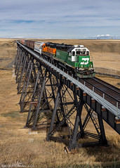 BNSF 2890 in Collins, MT
