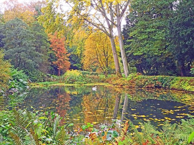 Tayfield Loch