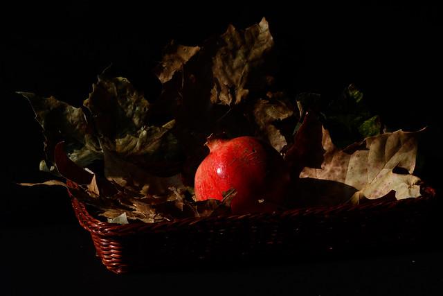 DSC_0993_6405 - Melagrana, un regalo dell'autunno - Pomegranate, an autumn gift.