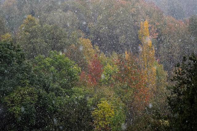 Autumn snowfall.