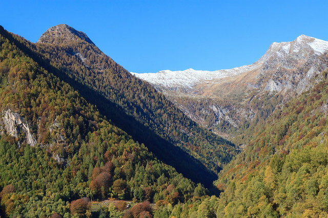 Le Foreste della Val Piodella