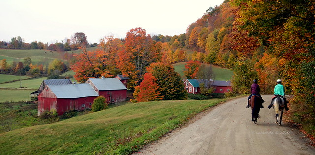 Jenne Farm in Reading Vermont 10 Oct 2020