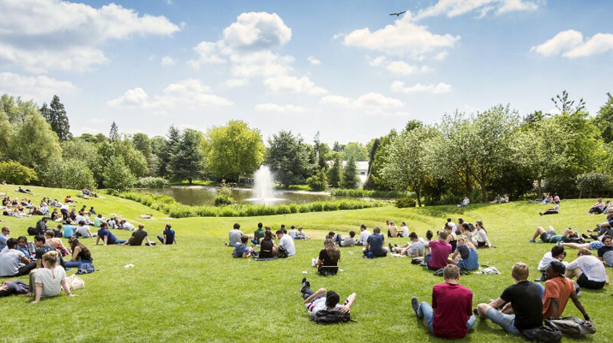 students enjoying sunshine on campus