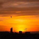 1. Oktoober 2020 - 19:41 - Atardecer en Valencia 6443