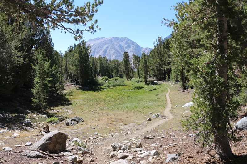 We cut cross-country to the main Sixth Lake Trail and continued west through small meadows