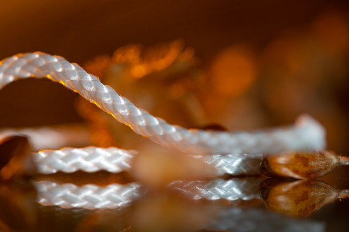 """String with Beechnuts - My entry for todays MacroMondays theme """"String"""""""