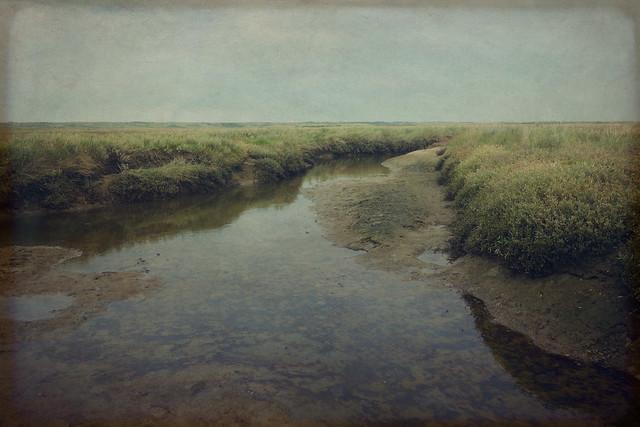 ...through waterland
