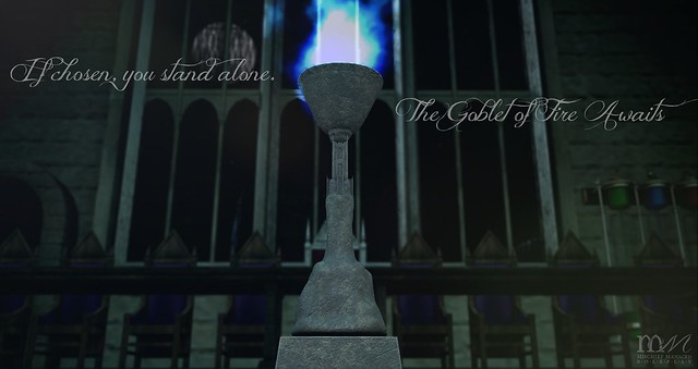 If chosen, you stand alone. The Goblet of Fire Awaits
