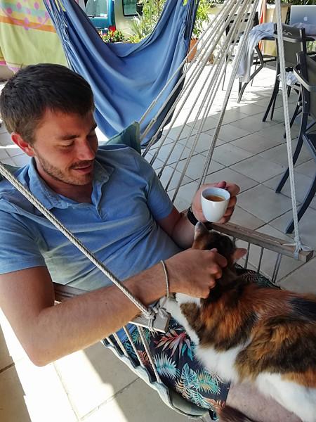 l'ami des chats