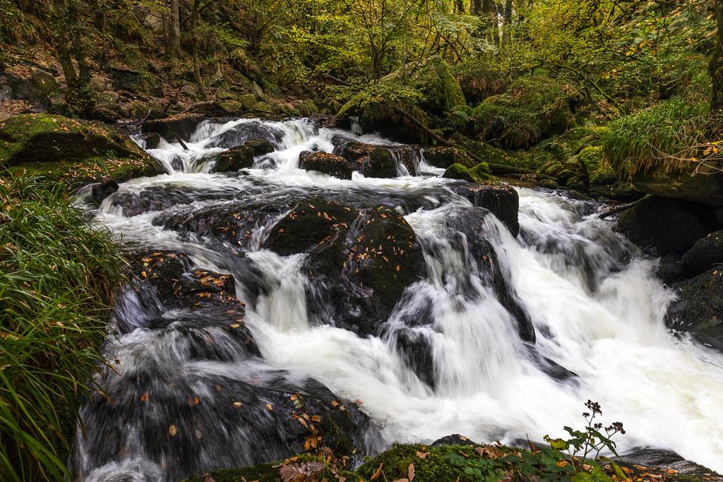 Golitha Falls 3-7780