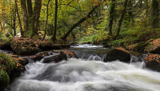 Golitha Falls 5-