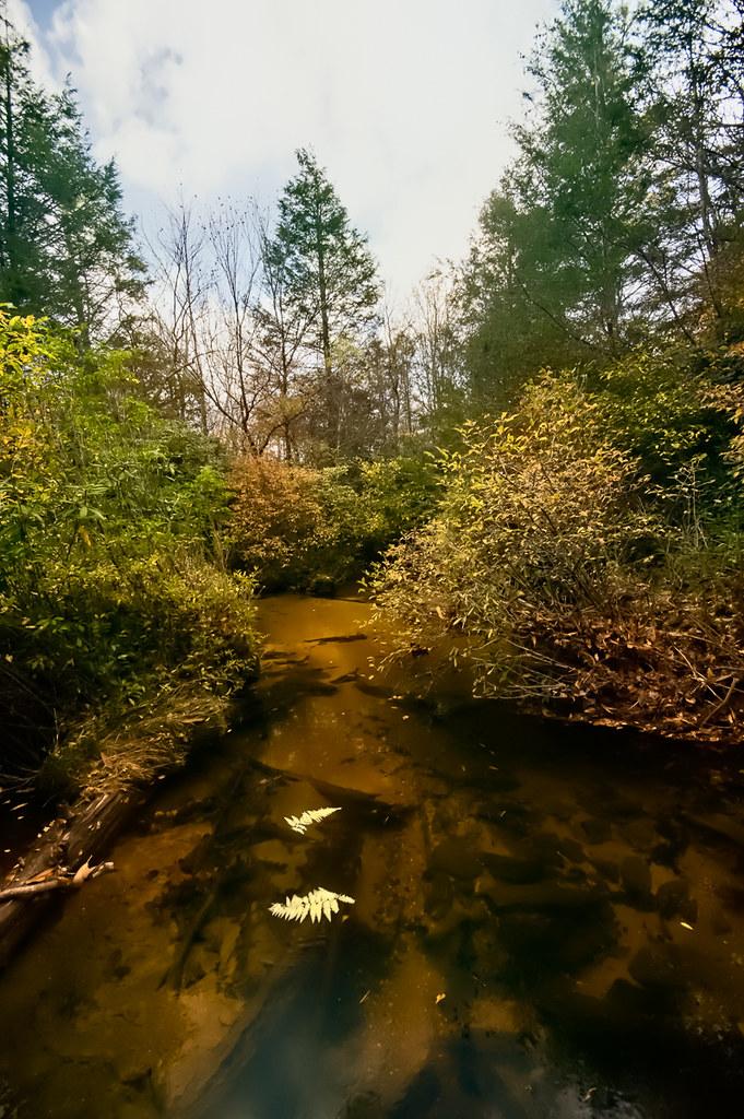 Panthertown Creek