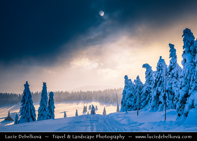 Czech Republic - Krkonoše - Winter Wonderland under heavy snow cover at Moody Sunset