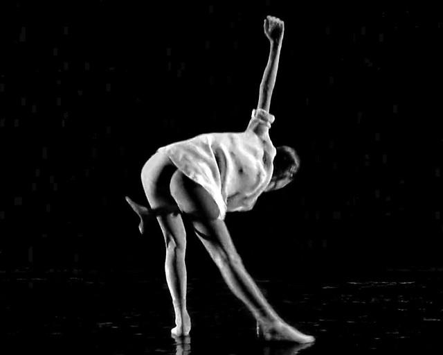 Dance ¬ 2015