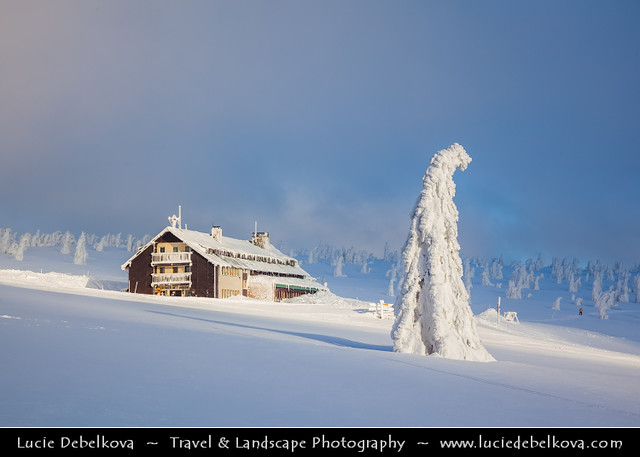 Czech Republic - Krkonoše - Magical Winter Wonderland under heavy snow cover
