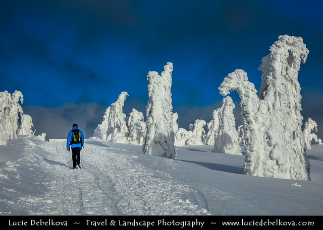 Czech Republic - Krkonoše - Walk through Magical Winter Wonderland