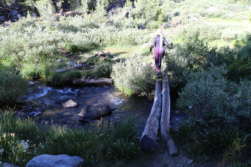 Crossing Big Pine Creek on a log bridge as we head toward Sam Mack Meadow