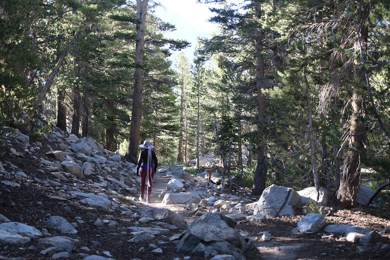 Hiking back down the NF Big Pine Creek Trail as we head to the Sam Mack Meadow Trail