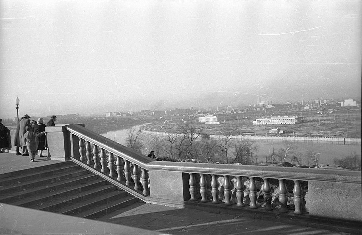 1950-е. Лужники