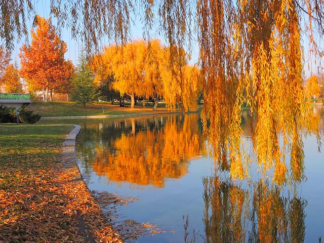 Sonbahar Renkleri ve Yansımaları(Autumn Colors and Reflections)