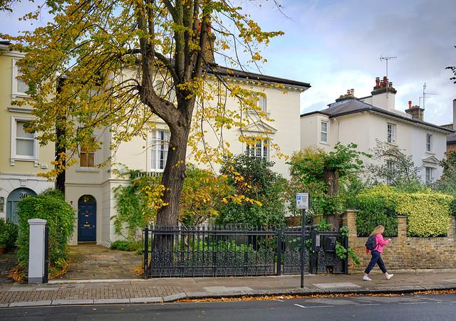 Autumn - Westbourne Park Road