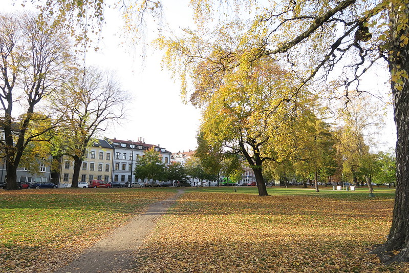 Oslo in October / etdrysskanel.com