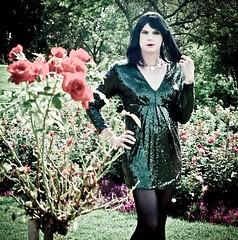 Glitter Dress 4