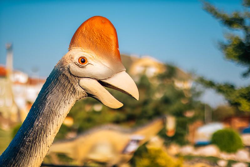 Close up of a bird like dinosaur in a dinosaur park