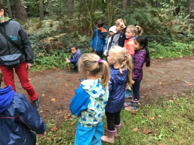 1ste leerjaar - Naar het Hallerbos