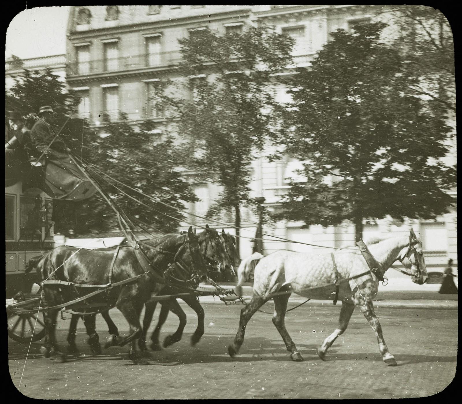 17. Омнибус, запряженный лошадьми, на проспекте
