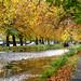 "<p><a href=""https://www.flickr.com/people/156679860@N02/"">Harry_Warren</a> posted a photo:</p>  <p><a href=""https://www.flickr.com/photos/156679860@N02/50510770698/"" title=""Grand Canal Dublin (4)""><img src=""https://live.staticflickr.com/65535/50510770698_fda1226c46_m.jpg"" width=""240"" height=""170"" alt=""Grand Canal Dublin (4)"" /></a></p>"