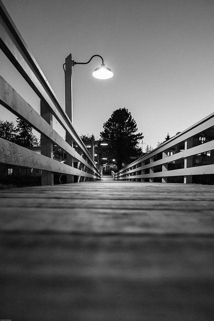 Painters lodge dock at night in B&W