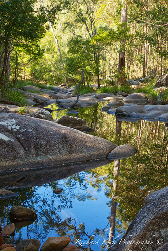 australia queensland motharmountain gympie water pools landscape trees rocks nature hinterland