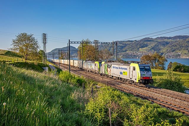 UKV 41655 Metz-Sablon - Novara Boschetto