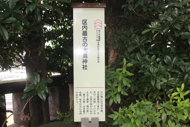 meguro-otori005