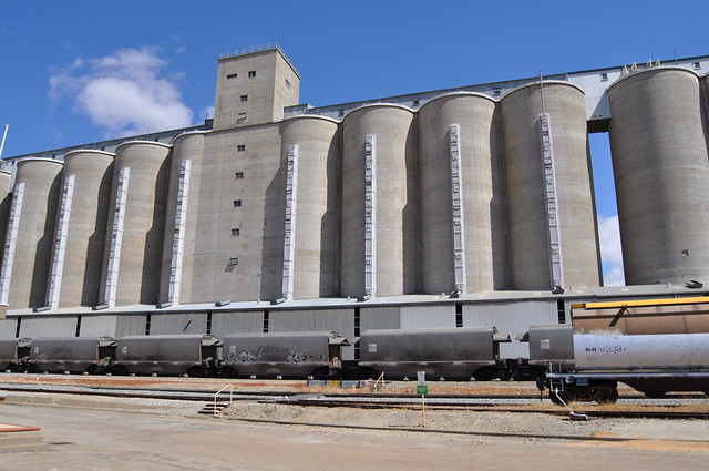 Wheat Silos and CBH GrainCovhops CBH Sidings at Northam Avon Yard 2015 10 23