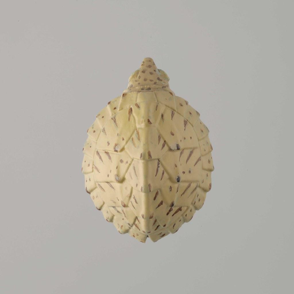 海洋堂《膠囊Q博物館》開運錢龜 第二彈!幫你招來滿滿的福氣與財運~還混入稀有全金配色喔