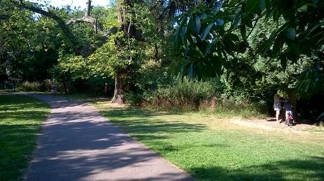 Allesley Park