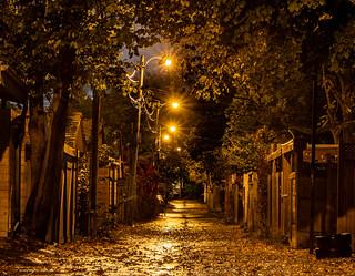 Toronto at 6am - Classic Toronto alley