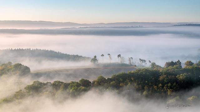Foggy morning in the southern Eifel!