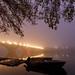 Foggy Potomac