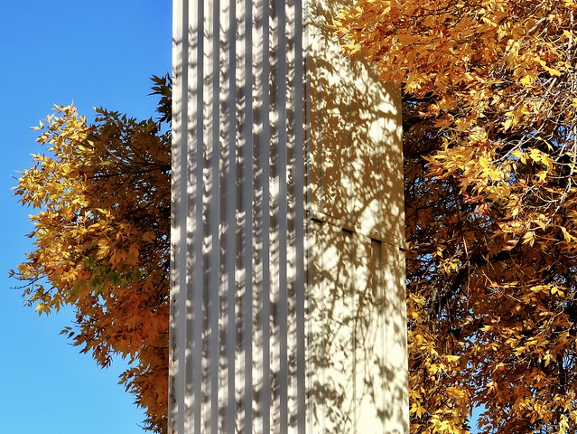 Pillar Canvas
