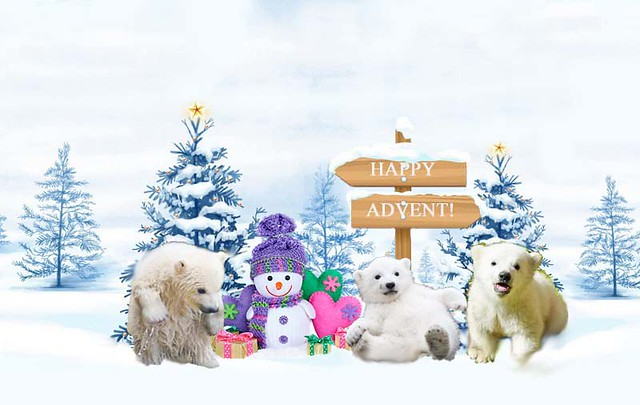 advent4Trio