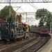 """<p><a href=""""https://www.flickr.com/people/77844259@N02/"""">WypalaczRafal</a> posted a photo:</p>  <p><a href=""""https://www.flickr.com/photos/77844259@N02/50513476716/"""" title=""""ED72-010 Kraków Łagiewniki 2 21paz2020""""><img src=""""https://live.staticflickr.com/65535/50513476716_62c65cf29b_m.jpg"""" width=""""240"""" height=""""160"""" alt=""""ED72-010 Kraków Łagiewniki 2 21paz2020"""" /></a></p>  <p>Pociąg osobowy do Suchej Beskidzkiej jeszcze jadący po torze pierwszym i samochód sieciowy na torze drugim, przygotowywanym do przełożenia ruchu pociągów, co ma podobno nastąpić w ciągu miesiąca.</p>"""