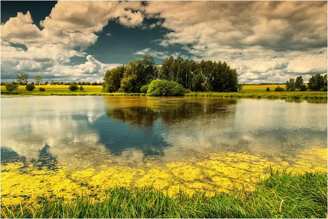 Der Mittelpunkt am Teich