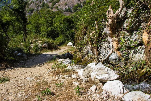 sentiero...pathway